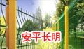 安平县长明交通 ()